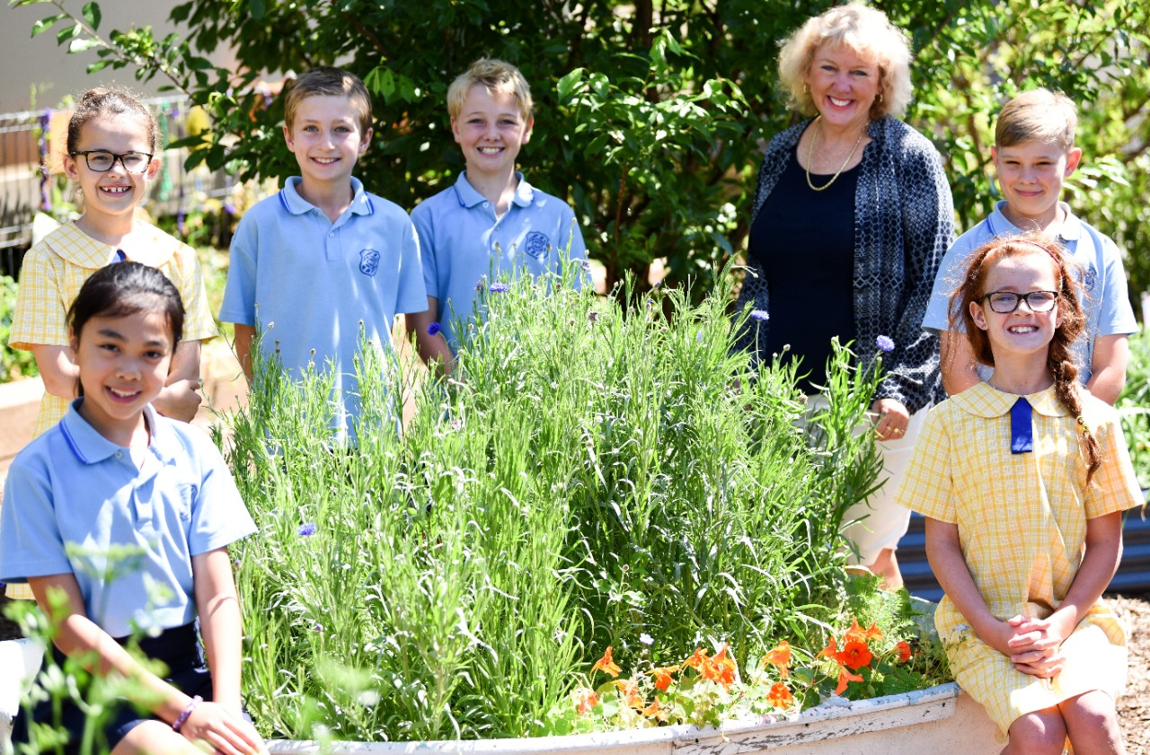Stephanie Alexander Kitchen Garden Foundation Manly West Public School
